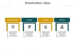 Shareholders Value Ppt Powerpoint Presentation Summary Information Cpb