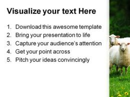 Sheep In Dandelion Field Animals PowerPoint Templates And PowerPoint Backgrounds 0211  Presentation Themes and Graphics Slide03
