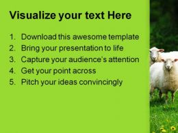 Sheep In Dandelion Field Animals PowerPoint Templates And PowerPoint Backgrounds 0211  Presentation Themes and Graphics Slide02