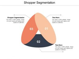 Shopper Segmentation Ppt Powerpoint Presentation Inspiration Grid Cpb