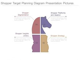 Shopper Target Planning Diagram Presentation Pictures