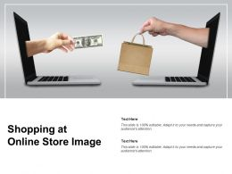 Shopping At Online Store Image