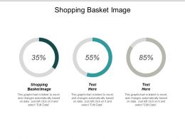 Shopping Basket Image Ppt Powerpoint Presentation Outline Gridlines Cpb
