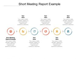 Short Meeting Report Example Ppt Powerpoint Presentation Layouts Guide Cpb