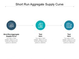 Short Run Aggregate Supply Curve Ppt Powerpoint Presentation Summary Template Cpb
