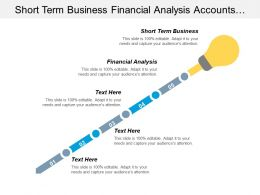 Short Term Business Financial Analysis Accounts Receivable Report Cpb