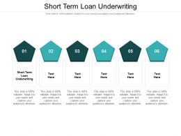 Short Term Loan Underwriting Ppt Powerpoint Presentation Slides Infographic Cpb