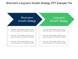 Short Term Long Term Growth Strategy Ppt Example File