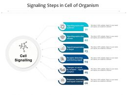 Signaling Steps In Cell Of Organism