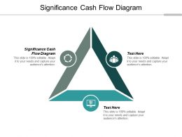 Significance Cash Flow Diagram Ppt Powerpoint Presentation Show Format Cpb