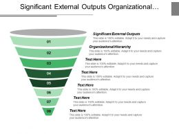 Significant External Outputs Organizational Hierarchy Capital Access Professional Management