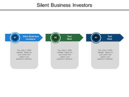 Silent Business Investors Ppt Powerpoint Presentation File Guidelines Cpb