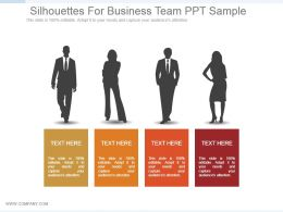 Silhouettes For Business Team Ppt Sample