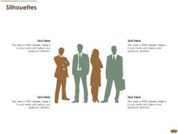 Silhouettes Pitch Deck Raise Post Ipo Debt Banking Institutions Ppt Professional Guide