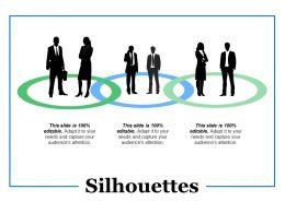 Silhouettes Ppt Summary Portfolio