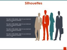 Silhouettes Presentation Outline