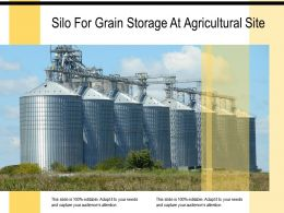 Silo For Grain Storage At Agricultural Site