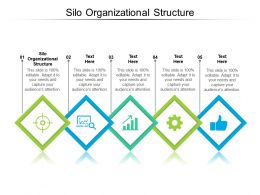 Silo Organizational Structure Ppt Powerpoint Presentation Infographic Template Smartart Cpb