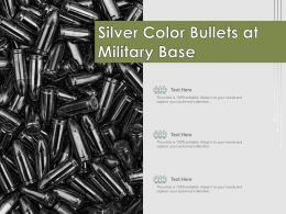 Silver Color Bullets At Military Base