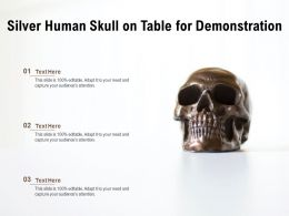 Silver Human Skull On Table For Demonstration