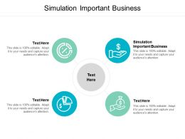Simulation Important Business Ppt Powerpoint Presentation Show Pictures Cpb