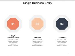 Single Business Entity Ppt Powerpoint Presentation Summary Themes Cpb