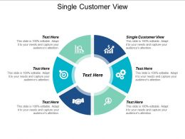 Single Customer View Ppt Powerpoint Presentation Gallery Themes Cpb