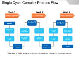 Single Cycle Complex Process Flow Presentation Slides