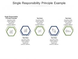 Single Responsibility Principle Example Ppt Powerpoint Presentation Styles Influencers Cpb