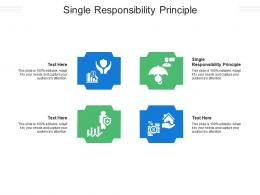 Single Responsibility Principle Ppt Powerpoint Presentation File Format Cpb