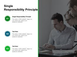 Single Responsibility Principle Ppt Powerpoint Presentation Infographic Template Templates Cpb