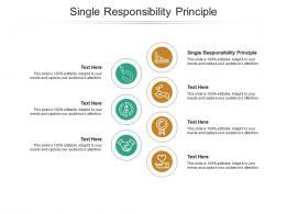 Single Responsibility Principle Ppt Powerpoint Presentation Model Layout Ideas Cpb