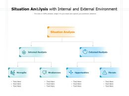 Situation Analysis With Internal And External Environment