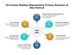 Six Circular Bubbles Representing Primary Elements Of New Venture