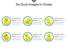 Six Duck Images In Circles