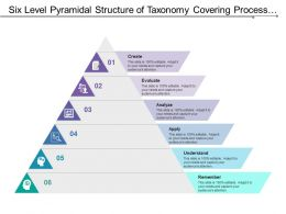 Six Level Pyramidal Structure Of Taxonomy Covering Process Flow