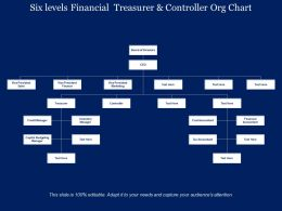 Six Levels Financial Treasurer And Controller Org Chart