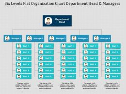 Six Levels Flat Organization Chart Department Head And Managers