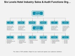 Six Levels Hotel Industry Sales And Audit Functions Org Chart
