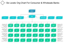 Six Levels Org Chart For Consumer And Wholesale Banks