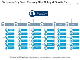 Six Levels Org Chart Treasury Risk Safety And Quality For Airlines