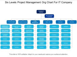 Six Levels Project Management Org Chart For It Company