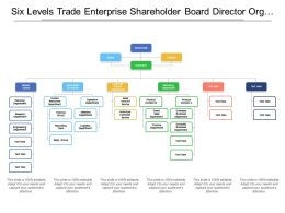 Six Levels Trade Enterprise Shareholder Board Director Org Chart