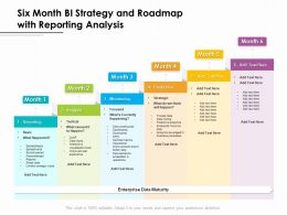 Six Month BI Strategy And Roadmap With Reporting Analysis