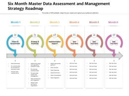 Six Month Master Data Assessment And Management Strategy Roadmap