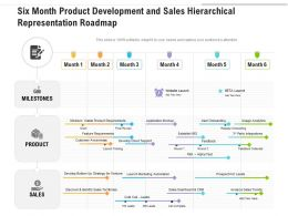 Six Month Product Development And Sales Hierarchical Representation Roadmap