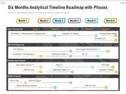 Six Months Analytical Timeline Roadmap With Phases
