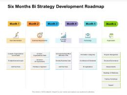 Six Months Bi Strategy Development Roadmap