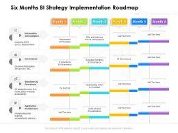 Six Months BI Strategy Implementation Roadmap