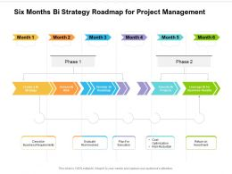 Six Months Bi Strategy Roadmap For Project Management